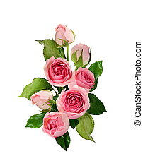 Pink rose flowers and buds bouquet