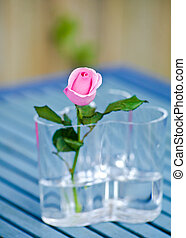 Pink rose in a glass vase