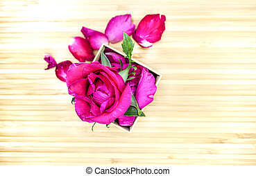 Pink rose in box on wooden background, Valentines day background.