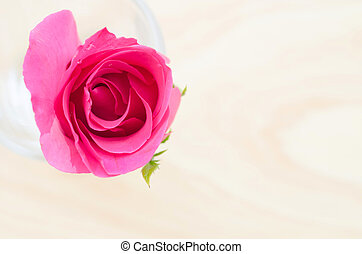 Pink rose in glass.