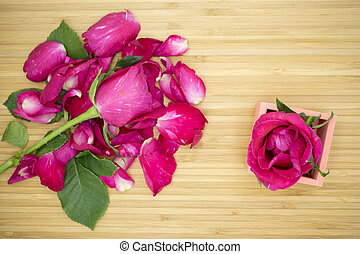Pink rose on wooden background, Valentines day background