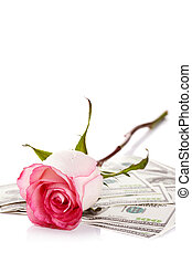 Rose and dollars.