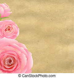 Pink Rose With Old Paper