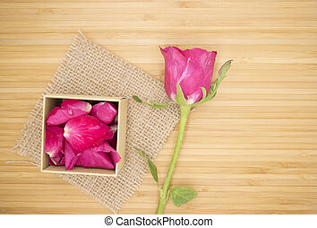 Pink rose with pink box on wooden background, Vintage retro theme