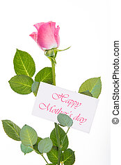 Pink rose with stalk and leaves and mothers day message