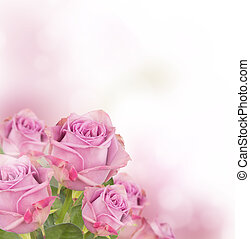 Pink roses bouquet with free space for text