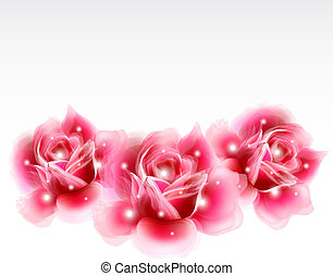Pink roses Floral Design Elements. Vector
