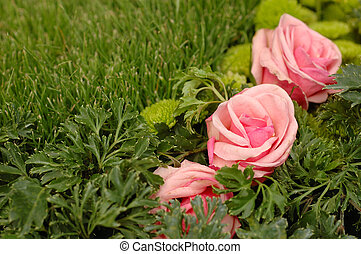 Pink roses in green grass