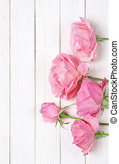 Pink roses on wood