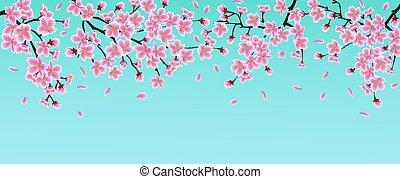 Pink sakura flower banner with cherry blossom branches