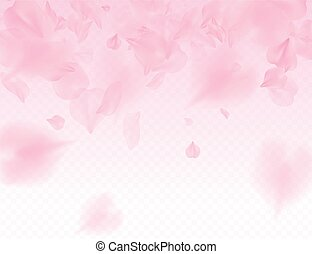Pink sakura petals transparent background. A lot of falling petals 3D romantic valentines day illustration. Spring tender light backdrop. Translucent overlay tenderness romance design.
