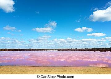 Pink salt lake in Western Australia