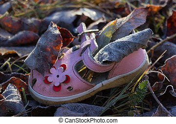 shoe for baby girl on ground of Autumn leaves