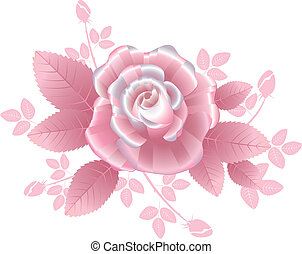 Pink silky rose with striped petals