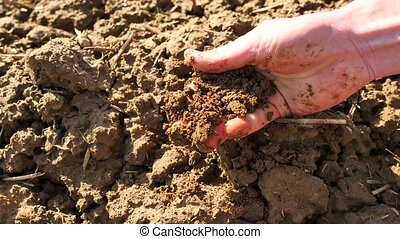 Pink skin hand looking for something in wet brown clay in the field. Gentle wind takes away dust from palm, dust between fingers, dirty nails.