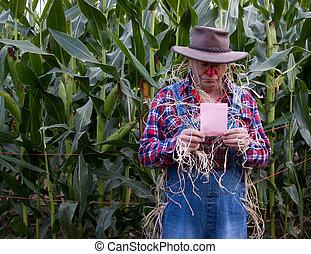 pink slip in corn field
