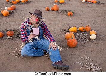 pink slip in pumpkin patch