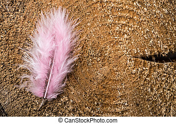 Pink small feather