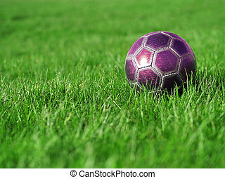 Pink Soccer Ball on Grass - A pink soccer ball on a field of...