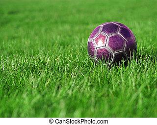 Pink Soccer Ball on Grass - A pink soccer ball on a field of...