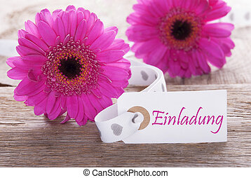 Pink Spring Gerbera, Label, Einladung Means Invitation -...
