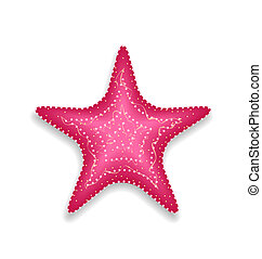 Pink starfish isolated on white background