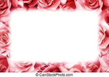 pink stieg, rahmen
