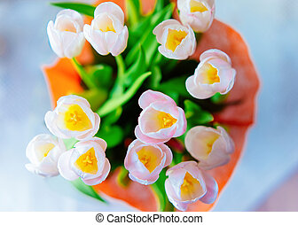 Pink Tulip flowers bouquet in vase