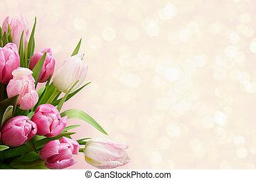 Pink tulip flowers corner