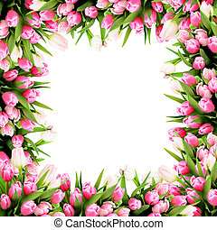 Pink tulip flowers frame