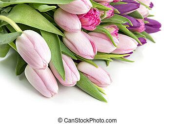 Pink tulips greeting card