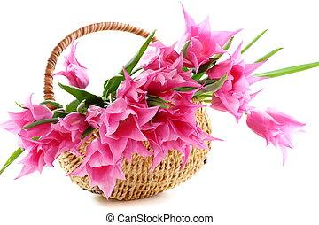 Pink tulips in wicker basket.