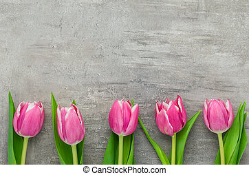 Pink Tulips on a grey background with copyspace
