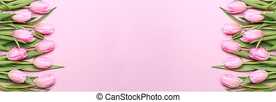 Pink tulips on the pink background. Flat lay, top view.  Valentines background.