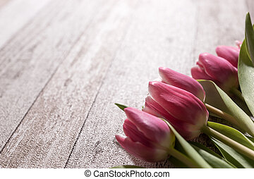 Pink tulips on wooden background