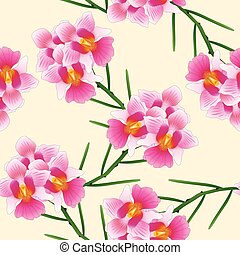 Pink Vanda Miss Joaquim Orchid. Singapore National Flower....