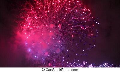 Pink Violet Fireworks Sydney - Big pink and violet midnight...