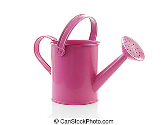 Pink watering can isolated on white background