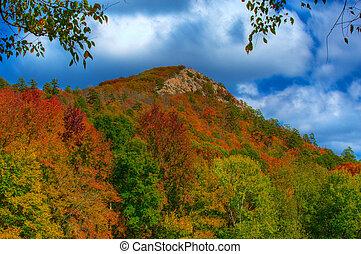 Pinnacle Mountain - Fall