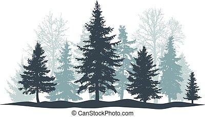 pino, bosque, vector, individuo, árbol hoja perenne, ...