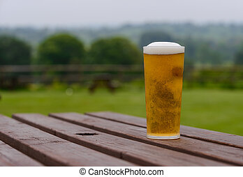 pint of lager on table