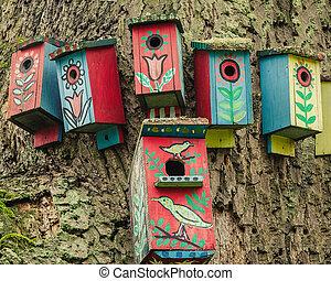 pintado, árbol, birdhouses