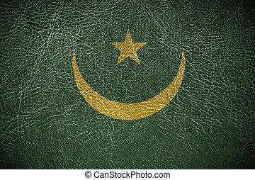 pintado, bandeira mauritânia, couro, textura