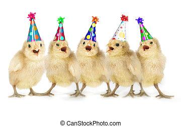 pintainhos, amarela, aniversário, bebê, cantando, feliz