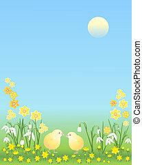 pintainhos, flores, páscoa