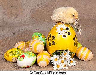 pintinho, ligado, ovos páscoa