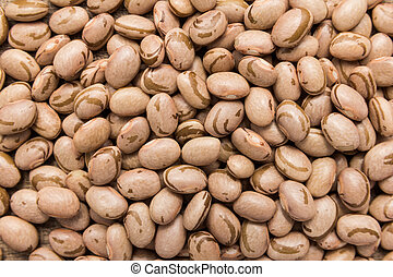 Pinto Bean legume. Closeup of grains, background use. -...