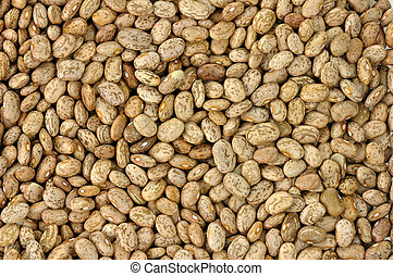 pinto beans background
