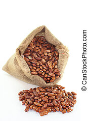 Pinto beans - dried pinto beans in a jute sack