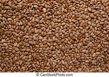 """Pinto Beans - Full frame of pinto beans, also called """"cowboy..."""